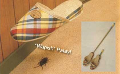 Wapish! Ipis!